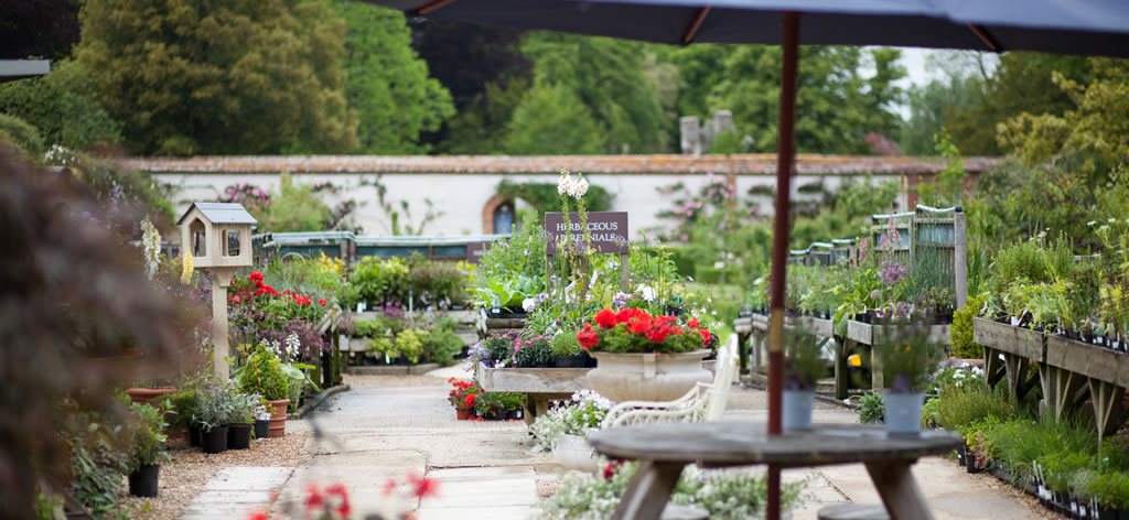 Cranborne Garden Centre Garden Centre Cafe And Gift Shop In Cranborne Dorset